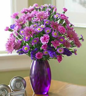 12pcs Purple Malaysians Mums deliver to your Father to Congratulate – Purple_Malaysians_Bouquets#007 | mother's day flower | Scoop.it