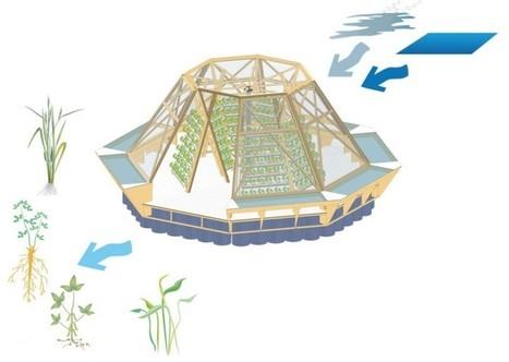 La «barge méduse» produit des légumes bio et purifie l'eau   Creativ Focus   Scoop.it