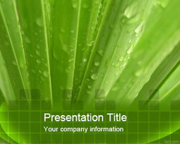 Aloe Vera PowerPoint Template | Free Powerpoint Templates and Backgrounds | lovelove | Scoop.it