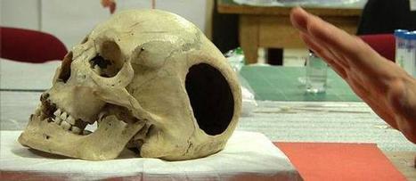Un crâne du Musée de l'Homme réclamé par la Patagonie - Le Figaro - Le Figaro   Patrimoine culturel - Revue du web   Scoop.it