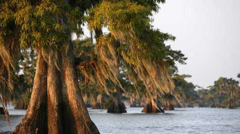 Southern Places You're Probably Mispronouncing | FCHS AP HUMAN GEOGRAPHY | Scoop.it