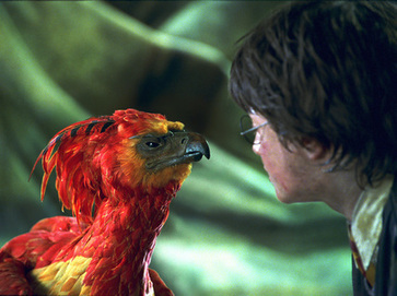 Elementos míticos en Harry Potter | Mitoslogos | Referentes clásicos | Scoop.it
