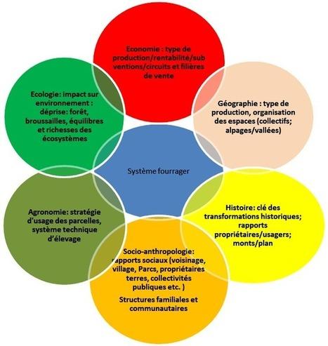 Trajectoires de l'agriculture en montagne :  les différentes approches des SHS | montagne et développement durable | Scoop.it