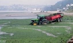 Nitrates : L'Autorité environnementale plutôt critique sur un projet d'arrêté  – Eau – Environnement-magazine.fr | Actualités de l'environnement | Scoop.it