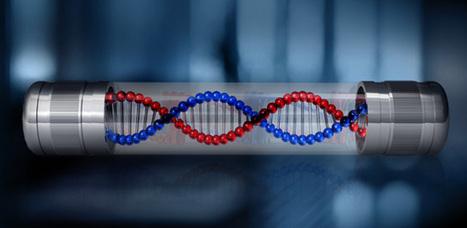 Scientists Work Toward Storing Digital Information in DNA | Sci-Tech Today | Business Video Directory | Scoop.it