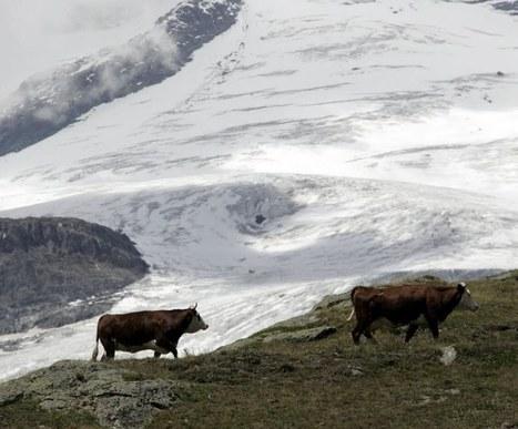 La nouvelle loi Montagne à l'Assemblée en septembre | Ecobiz tourisme - club euro alpin | Scoop.it