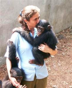 Deadly human bacteria infects chimps, raising new worries | The Wild Planet | Scoop.it