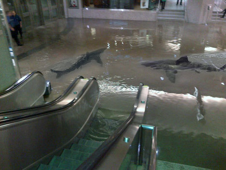 A roundup of Union Station flood funnies | Psychology of Consumer Behaviour | Scoop.it