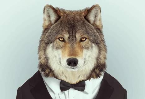 Así es el verdadero macho alfa | Reflejos | Scoop.it