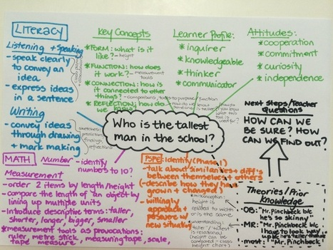 Designing early childhood australia emergent c for Emergent curriculum planning template