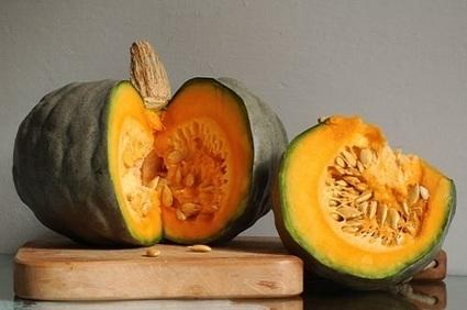 L'Ingrediente del Mese di Ottobre – la Zucca | Cibando Blog: tutto quello che c'è da sapere sul mondo del food | Best Food&Beverage in Italy | Scoop.it