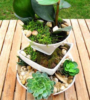 Initiales GG, une fille mais pas que...: DIY : un jardin vertical de poche! | DIY DIY | Scoop.it