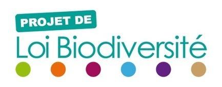 Projet de loi biodiversité - Ministère du Développement durable | Ecologie | Scoop.it