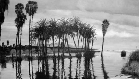 Titular de la Conanp reconoce importancia del Estero de San José en BCS | Ecología - Dietética  y Nutrición | Scoop.it