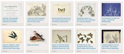 180.000 images libres de droit à réutiliser de manière créative | Gestion et traitement de l'information | Scoop.it