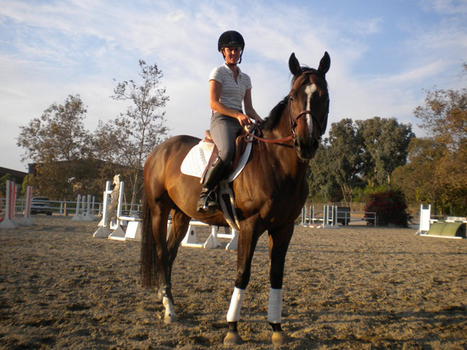 Horse Adoption Story: Megan Cavan and her ex-racehorse Cam - Equitrekking | Horse Racing News | Scoop.it