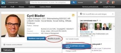 B2B: Le Blog: Profil LinkedIn en français ou en anglais? | Boostez-carrière-avec-linkedin | Scoop.it