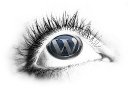 Is WordPress One Of The Biggest Mistakes You Can Make? - Long Beach Post | CMS Open Source | Scoop.it