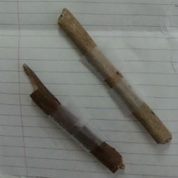 Little girl sends heartfelt apology after taking sticks from Yosemite | It's Show Prep for Radio | Scoop.it