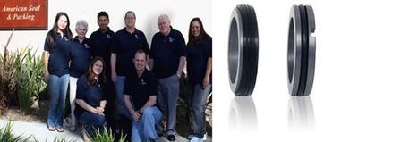 O-Rings Seals by American Seal & Packing | Mechanical Seal | Scoop.it