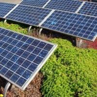 NKM veut «plus de visibilité» pour la filière photovoltaïque   Le groupe EDF   Scoop.it