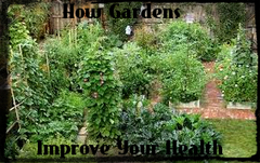 A Place Of Wellness: How Gardens Improve Your Health | Real Estate | Scoop.it