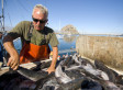 Fishermen And Conservationists Work Together To Improve Californian Fisheries | Aquaculture | Scoop.it