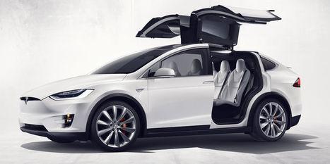 Tesla inaugure le végan à la sauce automobile | Inventive, innovation & creativity sourcing | Scoop.it