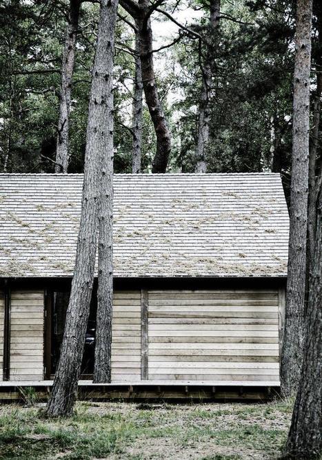Kitchen of the Week: A Woodsy Retreat in Denmark | Kuche Design | Scoop.it