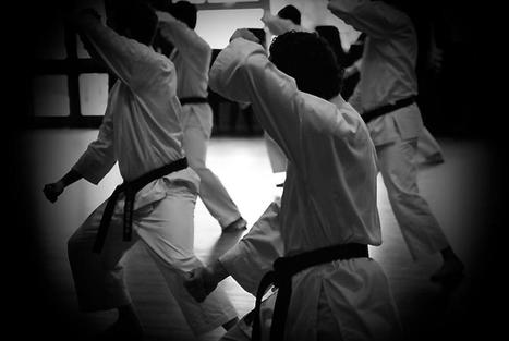 Ronin Bujutsu Kai   Ronin Bujutsu Kai   Scoop.it