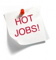 Hot Jobs in IT: Competitive Intelligence - Social-Hire | Big Data | Scoop.it