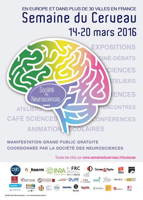 Semaine du Cerveau du 14 au 20 mars à Toulouse | Actualité des laboratoires du CNRS en Midi-Pyrénées | Scoop.it