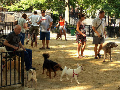 Shareable: Dog Parks, Humans and the Commons   Cooperation Theory & Practice   Scoop.it