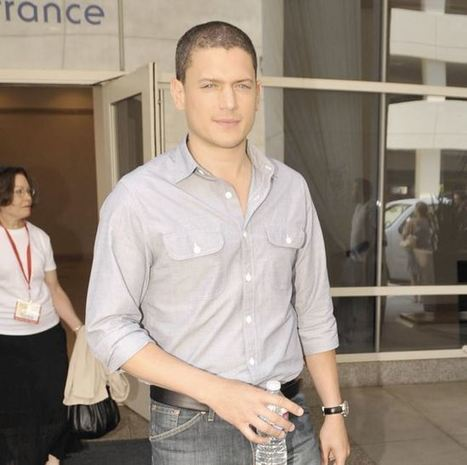 'Prison Break' star attempted suicide over his sexuality - Toowoomba Chronicle | Level 1 Sexuality Education | Scoop.it