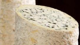 La Fourme d'Ambert dans tous ses états ! | Brazilian cheeses | Scoop.it