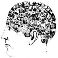 Multiple Intelligences, Multiple Literacies | critical reasoning | Scoop.it