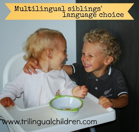 Raising a Trilingual Child: 7 facts that can determine the language spoken between multilingual siblings.   Raising Bilingual  Multilingual Child   Scoop.it