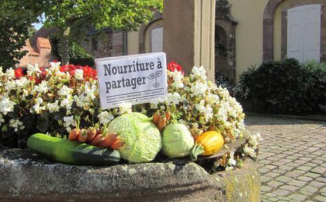 Lettre ouverte à TOUS les conseillers municipaux de France. | domaine des séquoias | Scoop.it