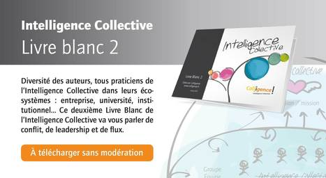 Intelligence Collective, Livre blanc 2 - à télécharger sans modération | outils-web | Scoop.it