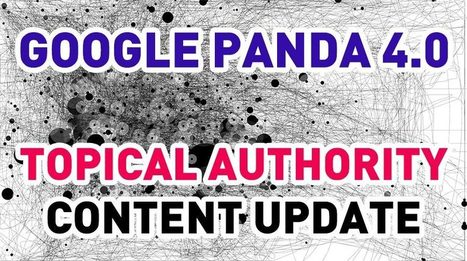 Is Google Panda 4.0 the Topical Authority Content Update of 2014? - Case Study | SEO | Scoop.it