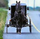 Amish 101 - Amish Beliefs, Culture & Lifestyle | Witness | Scoop.it