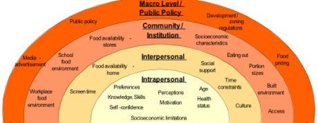 Intro to Social Work: Understanding Macro, Mezzo, Micro Levels of Analysis | School Social Worker | Scoop.it