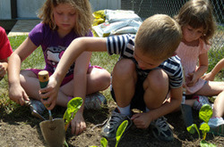 A (Fun!) Lesson in Farm to School | BCBSNC Foundation | School Kitchen Gardens | Scoop.it