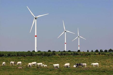 L'éolienne moderne n'est pas nocive | Eolien en bref | Scoop.it