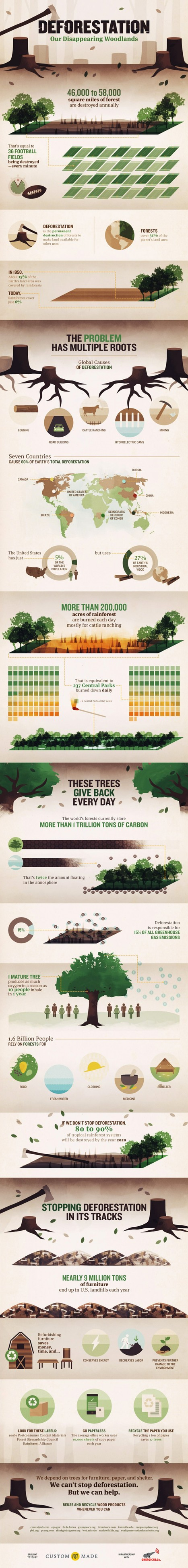 Deforestation: Our Disappearing Woodlands  - Infographic | Wellness Life | Scoop.it