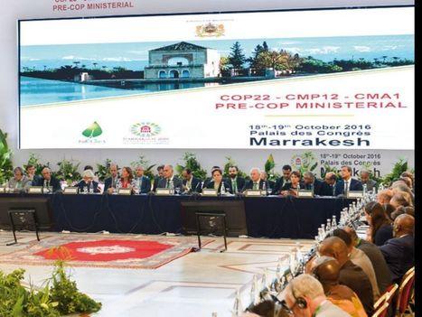 COP22 à Marrakech: faites chauffer la finance verte! - Challenges | Jean Tirole Prix Nobel d'économie 2014 | Scoop.it