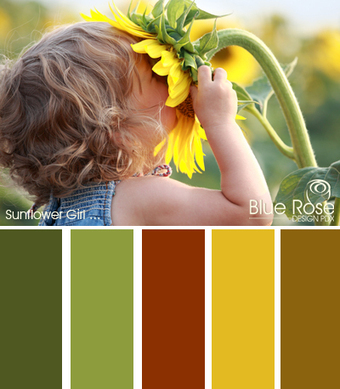 Color Inspiration: Sunflower Girl | Typography & Color Inspirations | Scoop.it