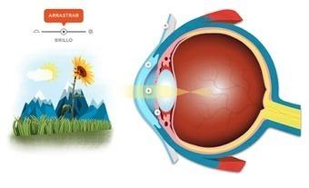 Recurso educativo interactivo para entender cómo vemos y cómo funciona el ojo | Entorns Virtuals d'Aprenentatge i Recursos Educatius WEB 2.0 | Scoop.it