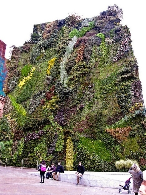 The Green Walls That Are Breathing New Life Into Cities - Garden Toolbox News   Gardening Galore   Scoop.it