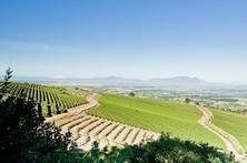 Wonders of the Western Cape | Vitabella Wine Daily Gossip | Scoop.it
